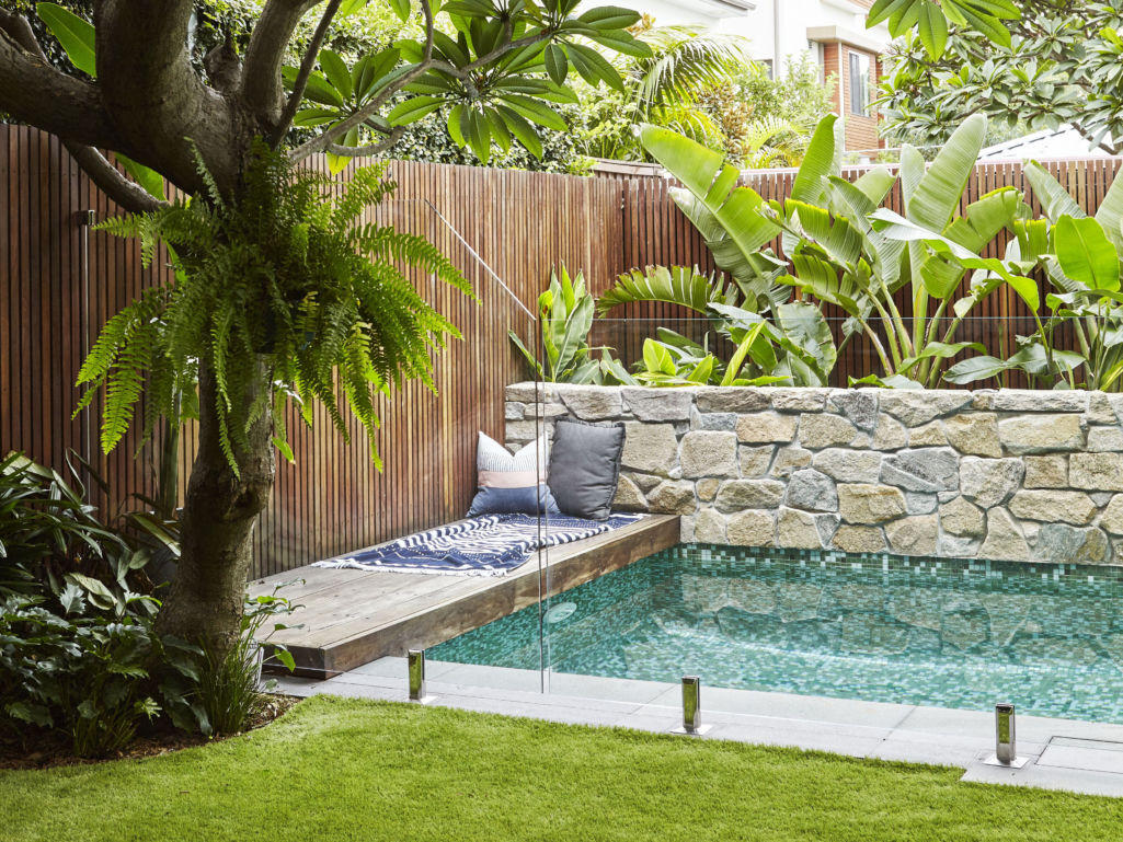 Expert Advice Top Plants To Use Poolside Eco Outdoor
