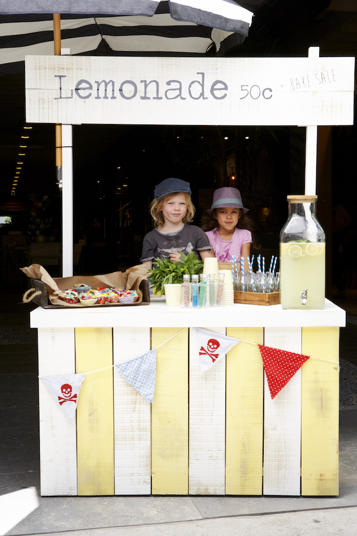 Refreshing Homemade Lemonade Stall Amp Recipe Eco Outdoor